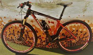 Giant Composite 3 XTC 29 Carbono 2013