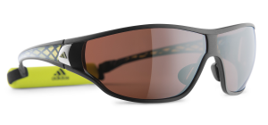 LST Polarized Silver H+ 6050
