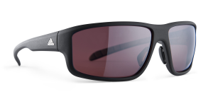LST Polarized Silver   6056