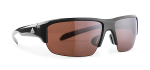 LST Polarized Silver 6053